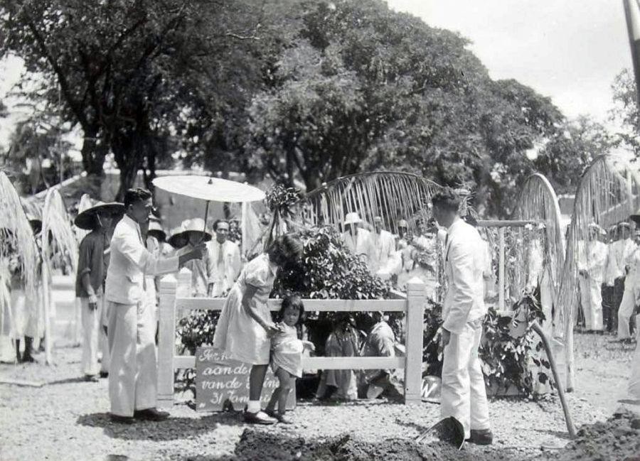 Gezelschap plant een waringinboom ter gelegenheid van de geboorte van Prinses Beatrix